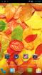 NEO里奥N002刷机包 最新官方ROM 精简 优化 纯净版 适合长期使用